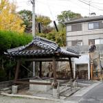 戸川陣屋の井戸。後ろの石垣は門の土台と思われる。