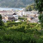 裏山から望む栖原の町。手前の蜜柑畑が拙堂も訪れた菊池溪琴邸跡。