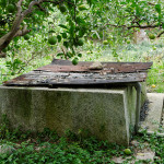 溪琴邸跡には5つ井戸が残るという。これはその最大のもの。